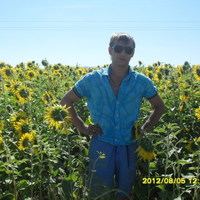 Андрей, 35 лет, Телец, Пермь