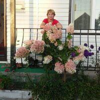 Ольга, 43 года, Весы, Артем