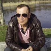 Бетин Лев 44 Анна