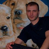 Дима, 39 лет, Телец, Томск