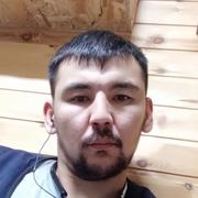 Лев 33 Новокуйбышевск