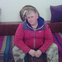 Алик, 41 год, Лев, Петушки