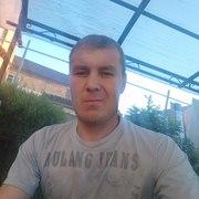 Алексей 34 Пикалёво