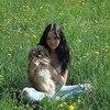 Дарья, 25, г.Киев