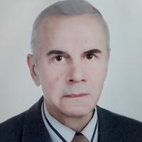Геннадий, 75 лет, Лев, Смоленск