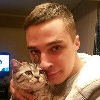 Дмитрии, 28 лет, Близнецы, Томск