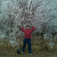 Андрей, 42 года, Овен, Курск
