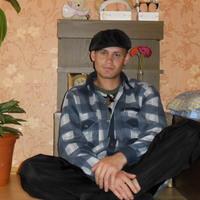 Андрей, 39 лет, Козерог, Стаханов