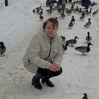 Елена, 40 лет, Дева, Петрозаводск