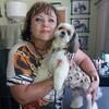 Анфиса, 55, Чугуїв
