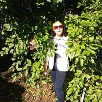 Елена, 48 лет, Рыбы, Сухой Лог
