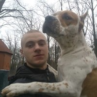 макс, 28 лет, Лев, Киев