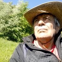 иван, 74 года, Весы, Киев