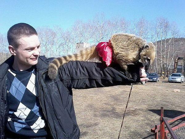 АЛЕКСАНДР Улан-Удэ знакомства, 34 года, Рыбы