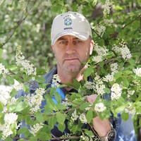 Альфред, 44 года, Лев, Красноярск
