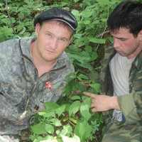 Алексей, 32 года, Дева, Арсеньев