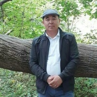 Толик, 38 лет, Телец, Москва