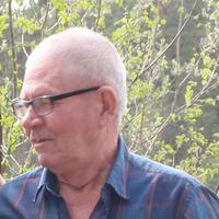 Константин, 68 лет, Лев, Электросталь