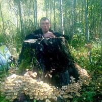 николай, 44 года, Телец, Барнаул