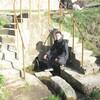 Гена Мельник, 30, г.Бричаны