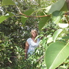 Раиса, 64, г.Каневская