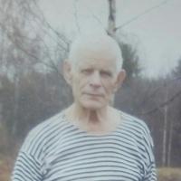 Борис, 80 лет, Рак, Архангельск