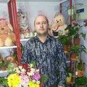 саша, 38 лет, Лев
