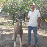 suhrob, 38 лет, Овен, Санкт-Петербург