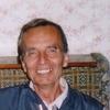 gencho cokanov, 75, г.Борово