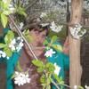 ирина, 32, г.Егорлыкская