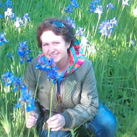 Людмила, 62 года, Скорпион, Санкт-Петербург
