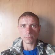 Волк 36 Красноярск