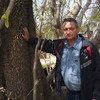 Рафаиль, 58, г.Ташкент