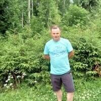 Андрей, 44 года, Лев, Ярославль