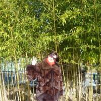 марина, 44 года, Весы, Краснодар