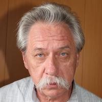 Алик, 66 лет, Рыбы, Москва