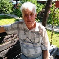 Александр, 79 лет, Стрелец, Тольятти
