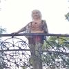 Ольга, 65, г.Одесса