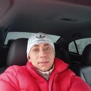 Антон 31 Гусь Хрустальный