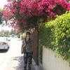 Maria, 59, г.Хайфа
