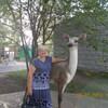 Валентина, 64, г.Красноярск