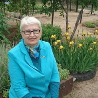 галина, 69 лет, Водолей, Волгоград