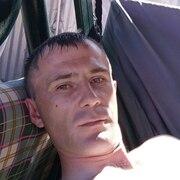 Евгений 35 Тула