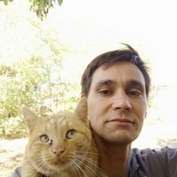 Юрий, 36 лет, Лев, Новороссийск