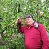 Андрей, 68, г.Брест