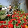 Владимир, 46, г.Старый Оскол