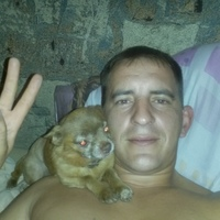 Алексей, 41 год, Дева, Краснодар