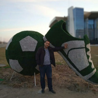 Дашгын, 35 лет, Овен, Баку
