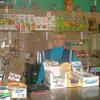 лариса островная, 52, г.Дакка