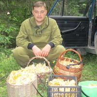 Дмитрий, 41 год, Рыбы, Томск